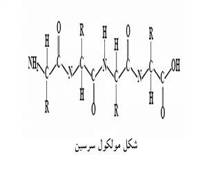 سریسین